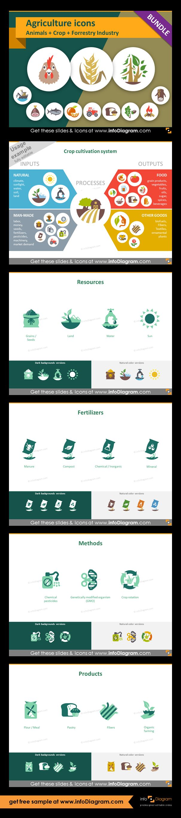 Food and Agriculture icons: Animals, Crop Cultivation, Forestry. All symbols in simple flat style, suitable for Metro UI style graphics. Icons provided in 5 versions. Graphic presenting crop cultivation process with icons of inputs and outputs. Resources of crops cultivation with graphics: seeds, land, water, sun. Fertilizers: manure, compost, chemical, mineral. Methods of crop cultivation: chemical pesticides, genetically modified organism (GMO), crop rotation.