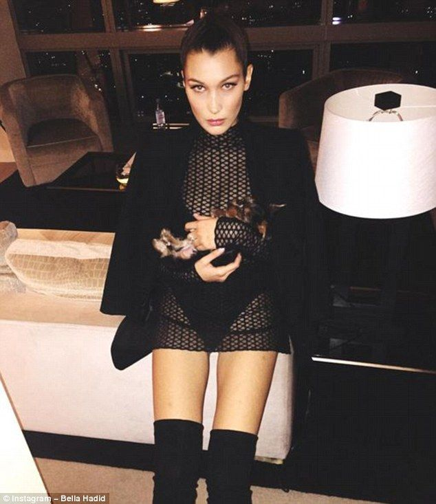 Sultry display: Bella Hadid looks set to increase her popularity after stepping out in not...