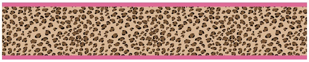 Buy this fun and funky cheetah wall border at www.Creativehomedecorations.com for $17.99