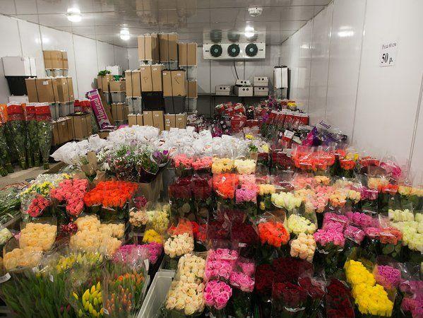 Новокузнецке оформление, цветы оптом на пражской