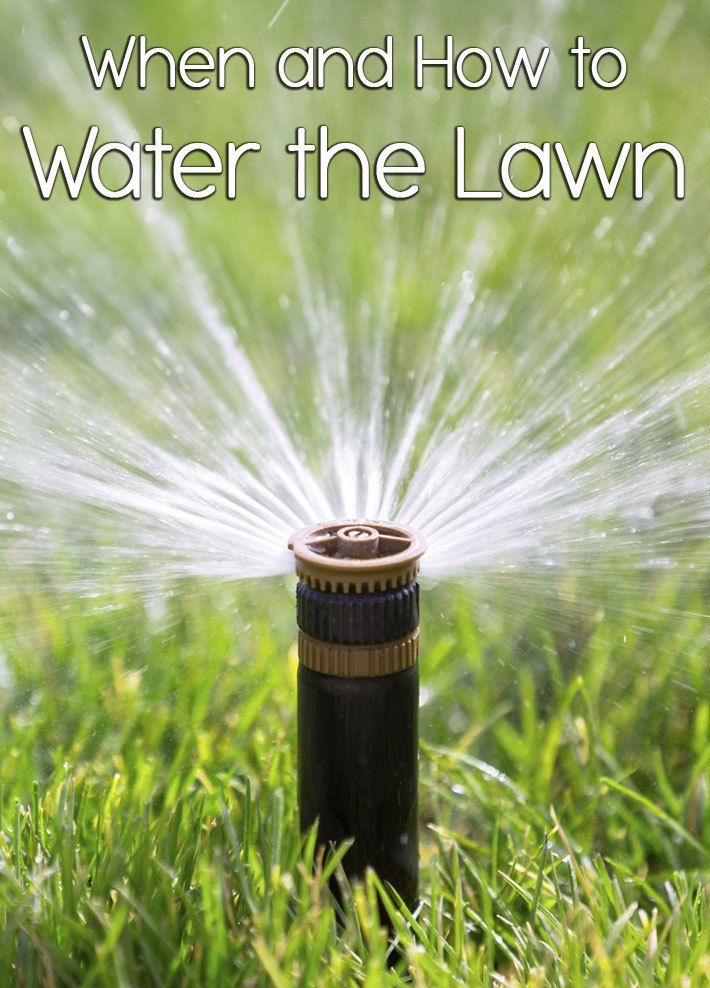 The A M Is The Best Time To Water The Lawn Because The Air Is
