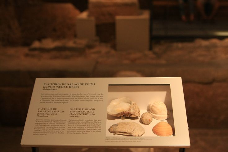 What to visit in Barcelona? The Museu d'Història de la Ciutat !(Museum of the history of the city)