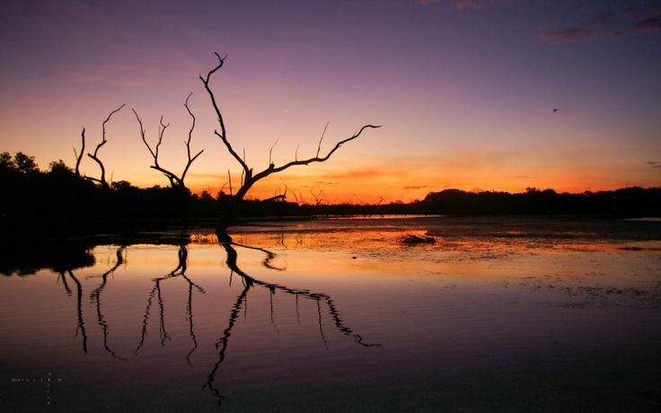 #kununurra #AUSTRALIE #Landscape Cecile Quillien Photographie