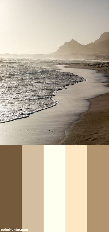 Sepia Surf Color Scheme from colorhunter.com