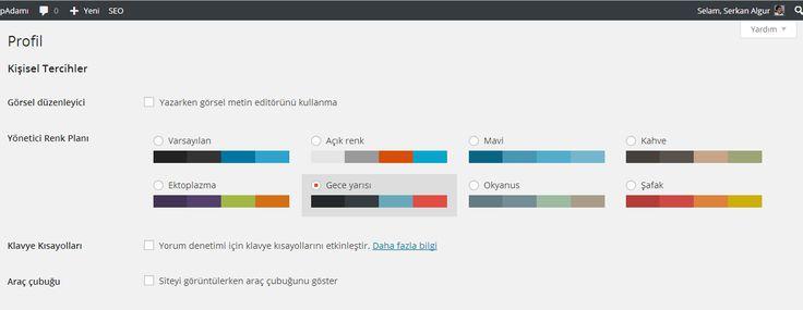 Yönetim alanı renk şablonu değiştirmek... - WpAdamı