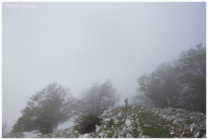 https://flic.kr/p/zqwWLF | fog | site: www.davidelabianca.it/  my page:                                   facebook