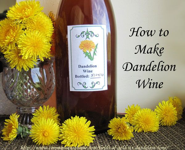 "Dandelion Wine Recipe -  ""In the late 1800s and early 1900s, it was not proper for ladies to drink alcohol; however, dandelion flower wine was considered so therapeutic to the kidneys and digestive system that it was deemed medicinal even for the ladies."""