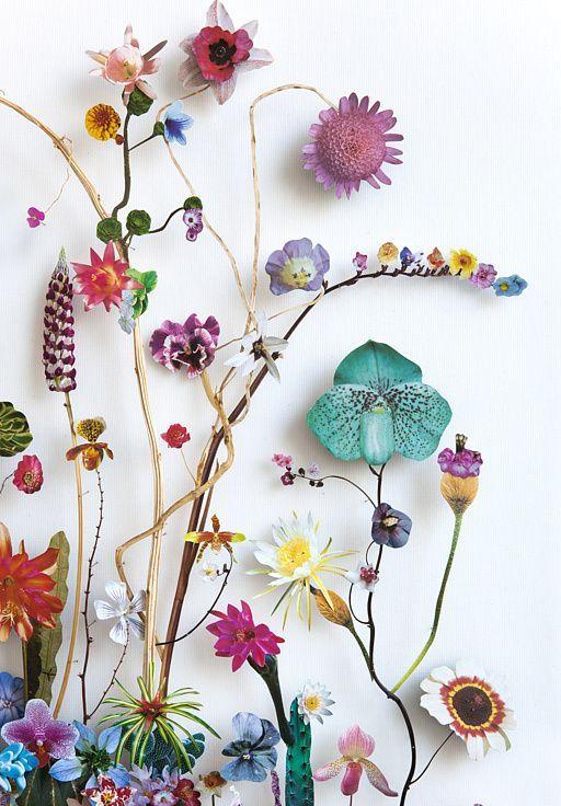 """Anne Ten Donkelaar - Esta artista holandesa crea exquisitas """"construcciones florales"""" a partir de pequeños regalos que la naturaleza va poniendo en su camino: una mariposa herida, una rama rota, un abejorro, extrañas hierbas... Con su inspiración y talento creativo es capaz de dar a estos objetos una segunda vida que irradia una nueva luz. Delicada artesanía natural..."""