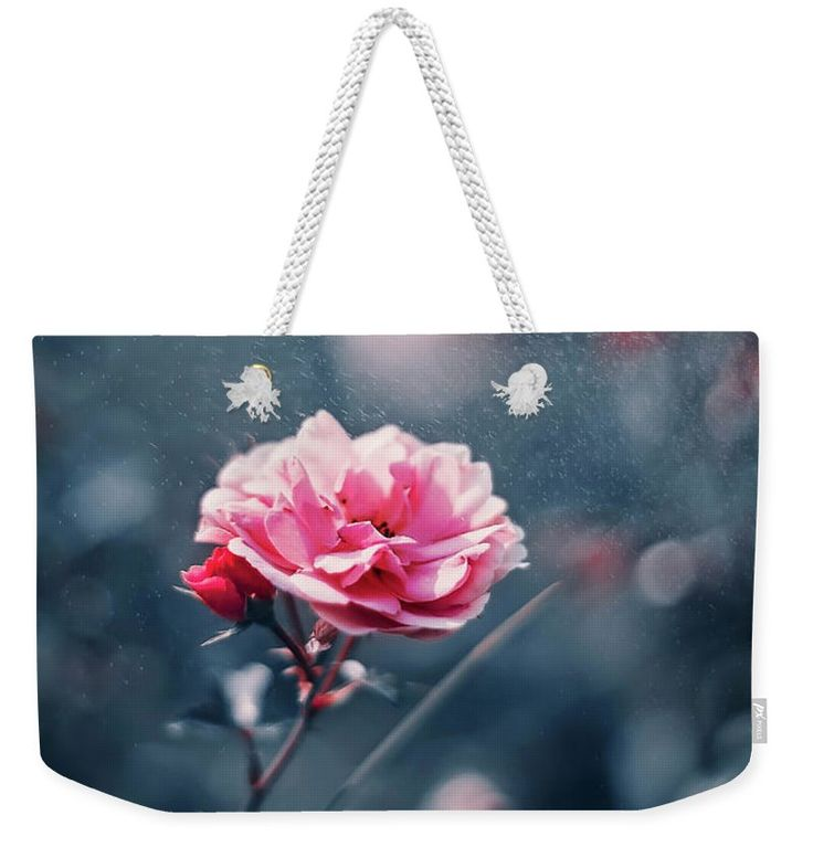 Rose Weekender Tote Bag featuring the photograph Pink Romantic Rose by Oksana Ariskina. A Pink Garden Summer Rose flower in a sparkling bokeh gray, navy blue abstract background. Available as mugs, posters, greeting cards, phone cases, throw pillows, framed fine art prints, metal, acrylic or canvas prints, shower curtains, duvet covers with my fine art photography online: www.oksana-ariskina.pixels.com #OksanaAriskina