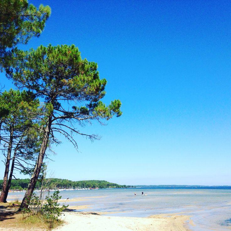 Un petit coin de paradis dans les Landes...Lac de Biscarrosse soleil et eau turquoise dans un cadre nature à l'ombre des pins propice à la détente. Des plages cachées au plages avec activités le Lac de Biscarrosse vous fait découvrir toutes ses facettes..! www.guide-des-landes.com