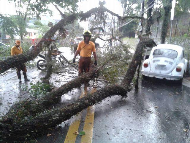 Chuva alaga região, derruba árvores e telhado de posto em Itapecerica ~ Jornal - Itapecerica da Serra - noticias, cultura, esportes, politica, governo etc.