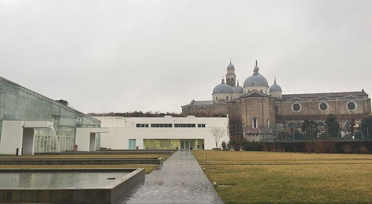 L'orto botanico di Padova, il più antico del mondo, patrimonio dell'Unesco.