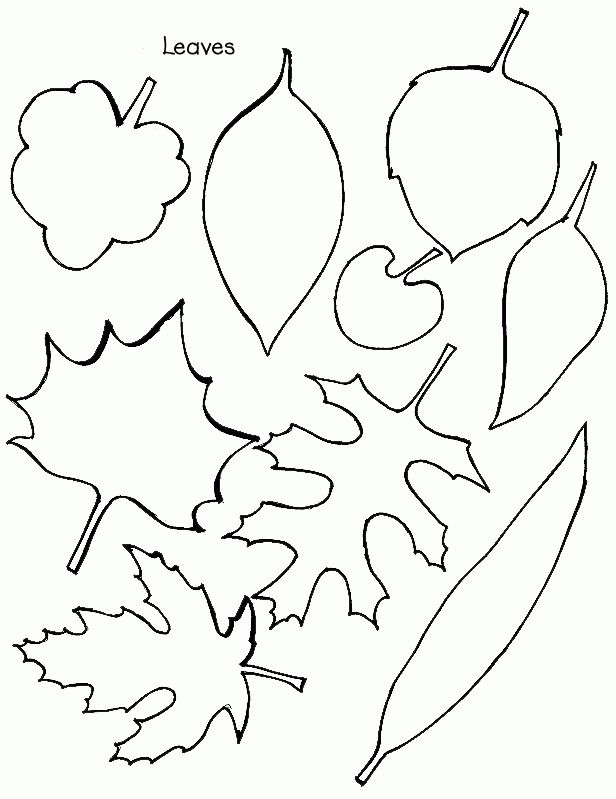 fall stencils printable | Fall Leaf Stencils Free Printable http://learningenglish-esl.blogspot ...