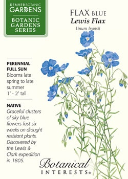 $2.69 Blue Flax. Graceful sky blue flowers last six weeks on drought resistant plants. Discovered by Lewis & Clark in 1805. NATIVE.