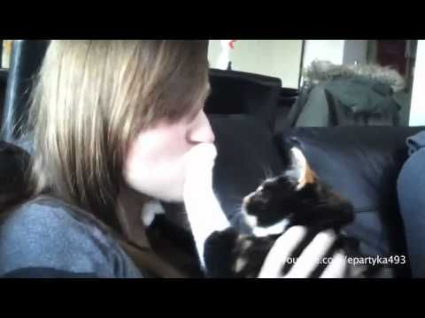 Cats and Dogs Hate Kisses Funny Compilation * thx Sammy, couldn't open the link that you gave me,  but I found this