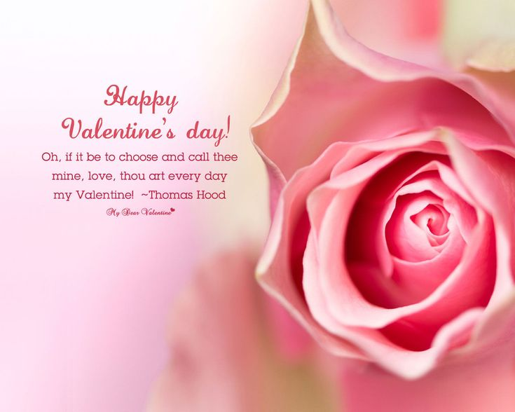 138 Best Valentines Day Images On Pinterest | Valentineu0027s Day Quotes, Happy Valentine  Day Quotes And Valentines Day Hearts