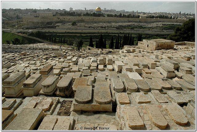 A Israel cada pedra és sagrada i motiu de conflicte entre religions i grups socials. Tant és així que la vida quotidiana resulta veritablement difícil per als seus habitants.   A la fotografia, l'antic cementiri jueu profanat per les tropes jordanes durant l'ocupació de 1967, als peus de la muntanya de les oliveres. Al fons, les muralles de la ciutat vella de Jerusalem i al centre la Haram Esh Shérif, la mesquita de la Cúpula de la Roca.
