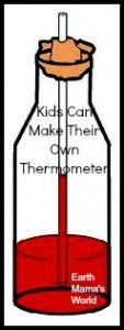 Let your kids make a thermometer using only water and rubbing alcohol, super cool!