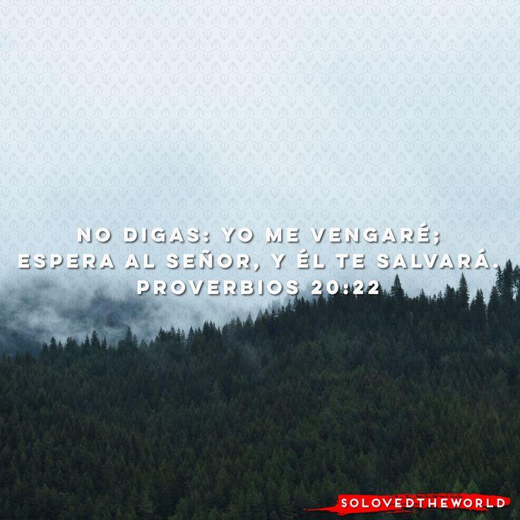 No digas: Yo me vengaré; Espera a Señor, y él te salvará. Proverbios 20:22 #Jesús #Dios #Padre #EspirituSanto #Evangelio #Biblia #Amor #Vida #leyendoproverbios #Ideas #Jesusontheweb #solovedtheworld