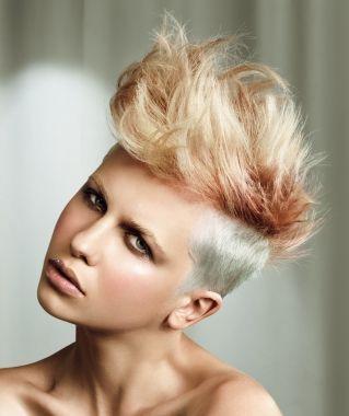 59 Best Punk L Mohawks L Mullets Images On Pinterest Hair Dos Updos