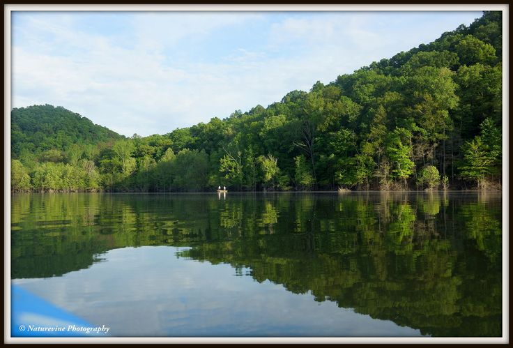 A peaceful morning at Cave Run Lake in Morehead, Kentucky.  Cave Run Lake is an 8,270-acre lake nestled in the beautiful mountains of eastern Kentucky. Lake visitors will find many opportunities for relaxation and fun. Boating, camping, fishing, hiking, hunting, wildlife viewing, and visiting historical sites are a few of the many activities visitors enjoy.  Photo by:  Marcy Mitchell - Naturevine Photography