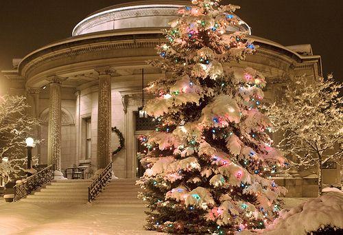 Lights thru the snowWinter Snow, White Christmas Trees, Christmas Time, Cant Wait, Christmas Lights, Winter Wonderland, Inspiration Pictures, Outdoor Christmas, Merry Christmas