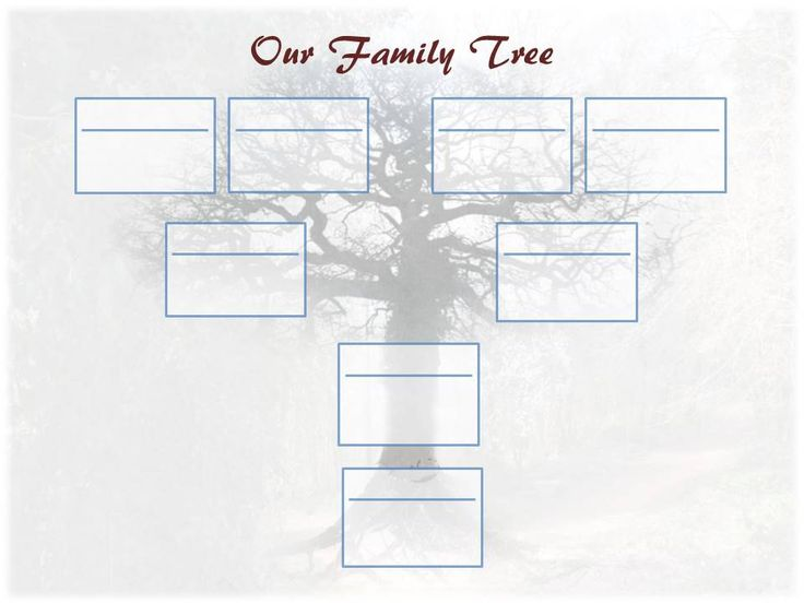 20 Best Free Family Tree Templates Images On Pinterest Family Tree