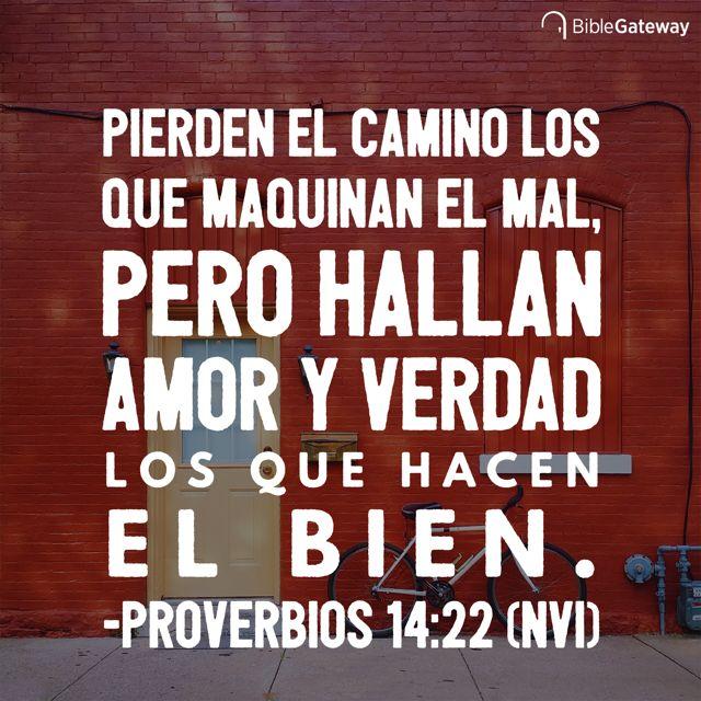Pierden el camino los que maquinan el mal, pero hallan amor y verdad los que hacen el bien. - Proverbios 14:22
