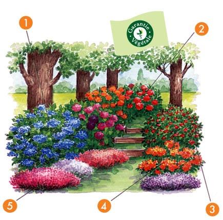 90 best Jardin fleuri images on Pinterest Gardening, Vegetable