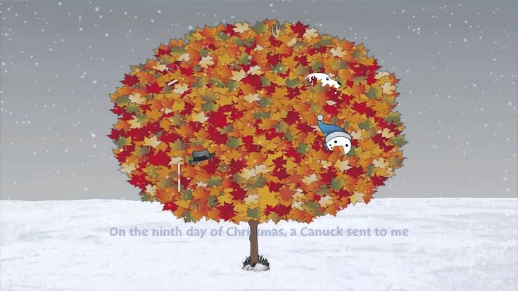 CANUCK VERSION - A Moose in a Maple Tree - The All-Canadian 12 Days of Christmas