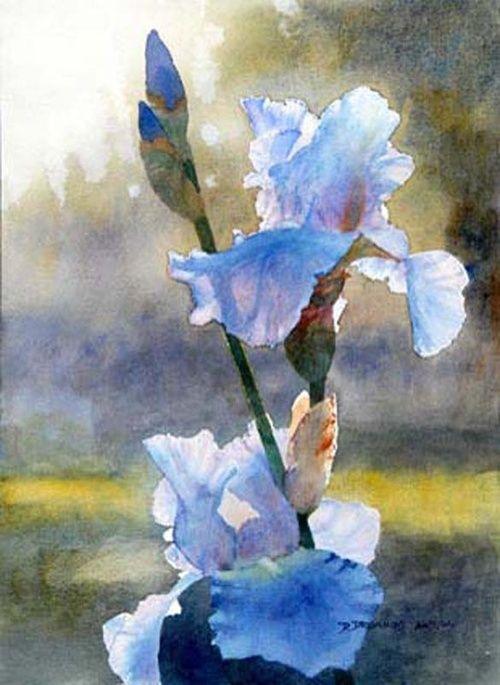 Sapphire Hills Morning: Original watercolor art still life painting of blue iris flowers by artist and painter David Drummond