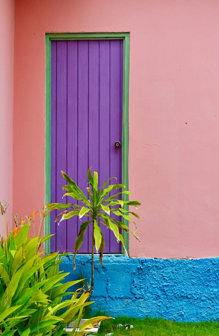 """""""Isla de Providencia, Colombia.""""                  NOTE: PRESS """"VISIT"""" TO SEE MORE IMAGES IN THIS COLLECTION.        (This is the only door/window/Colombian image I saw in the """"Visit"""" section.)            (Pinned both to Travel - *Doors & Windows... & to Travel - Cartagena & Colombia....)"""