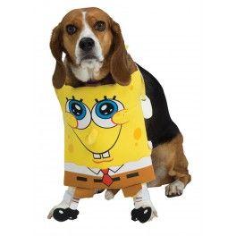 Disfraz de Bob Esponja para perro.  Vivirá tu mascota en una piña en el fondo del mar con este disfraz de Bob Esponja para perro.