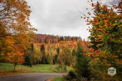 Somewhere on our way to Czech Republic in autumn.
