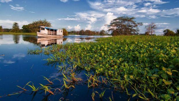 Exposição 'Rios da Minha Aldeia' mostram belezas da Amazônia - Portal Amazônia