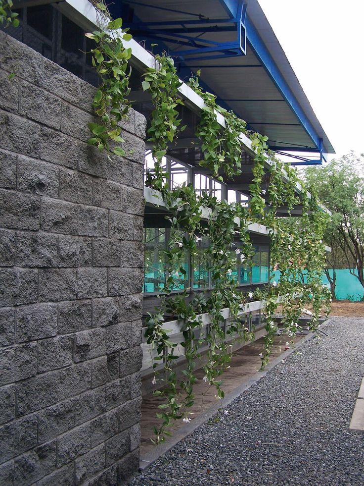 Fachada verde para las oficinas de Industintas