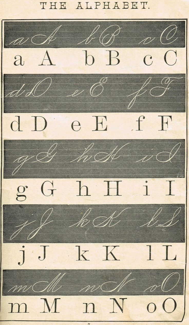 Alphabet School Primer Page - Royalty Free Printable Antique Graphics from http://knickoftimeinteriors.blogspot.com