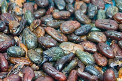 Recognise these? They're raw cacao beans!