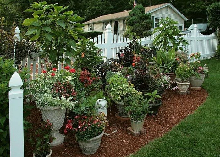 Container gardens ideas container garden ideas for Garden design ideas with pots