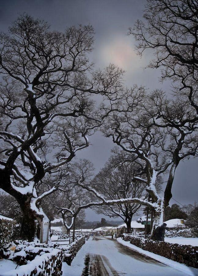 ✿ ❤ Jeju Island - south Korea