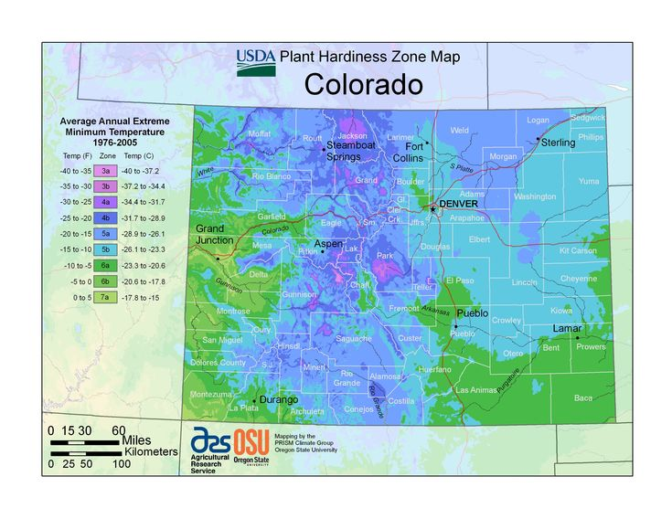 Power flowers colorado zone map plant hardiness zone for Gardening zones colorado