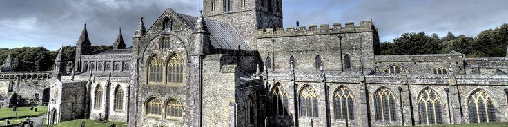 St Davids Banner.jpg