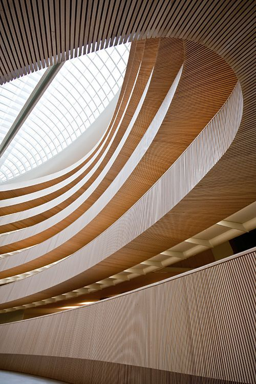Biblioteca de la Universidad de Zurich - Facultad de Derecho (Santiago Calatrava) #estructuras #madera