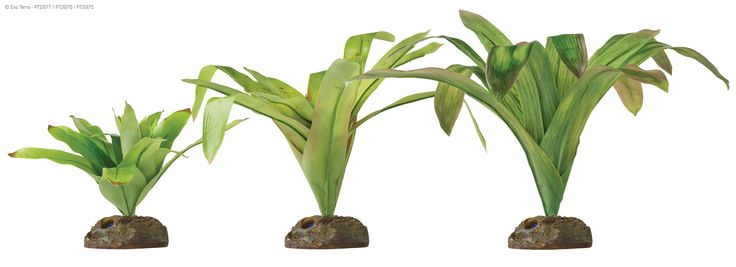 Exo Terra Smart Plants Are Specifically Suited To