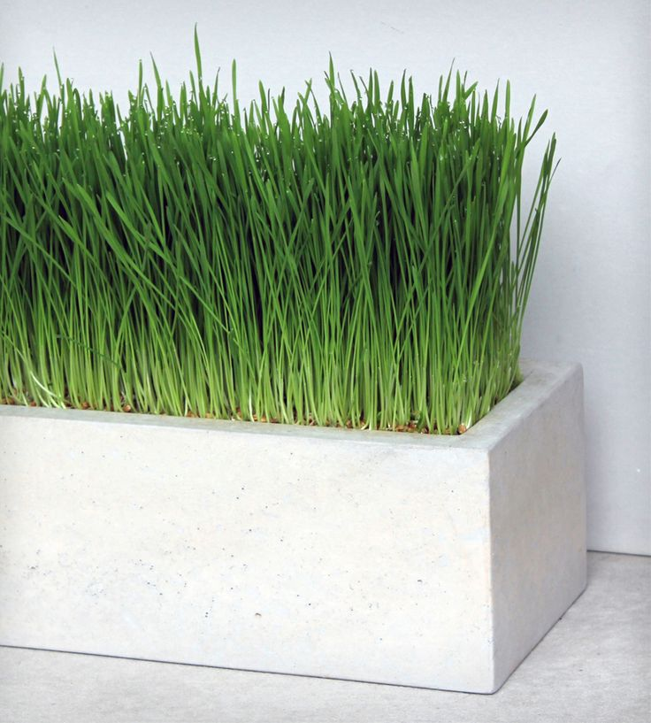 Superb Concrete Box Planter By Roughfusion Available At Scoutmob Now. The Place To  Get Inspired Goods By Local Makers.
