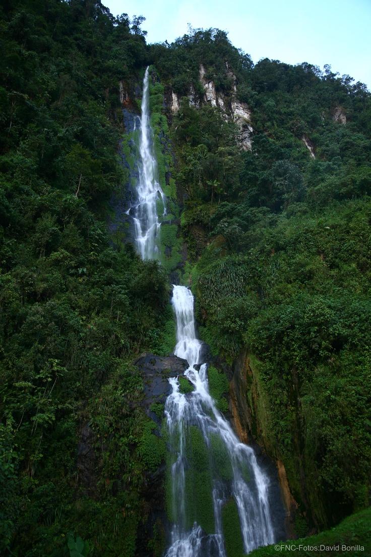 Cascada colombiana / Colombian fall.