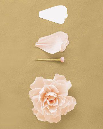 Crepe-Paper Peony