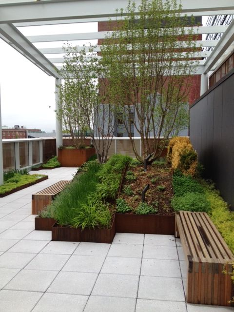 Rooftop garden at the Paul S. Russell, MD Museum of Medical History and Innovation