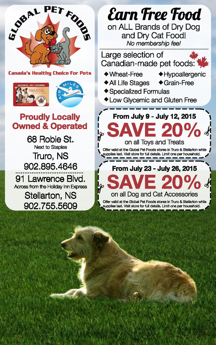 Pet Food Stores Guelph