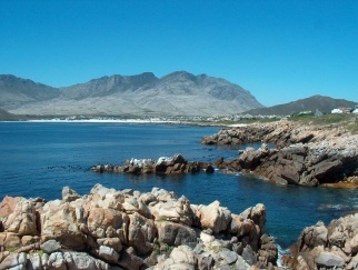Home Bargains on Offer in Arty Pringle Bay